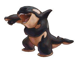 portfolio_Laughing orca
