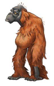 portfolio_Orangutan female3