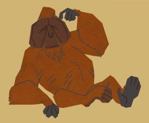 portfolio_Orangutan male 2